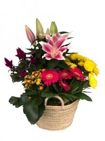 1 Capazo de flores de temporada