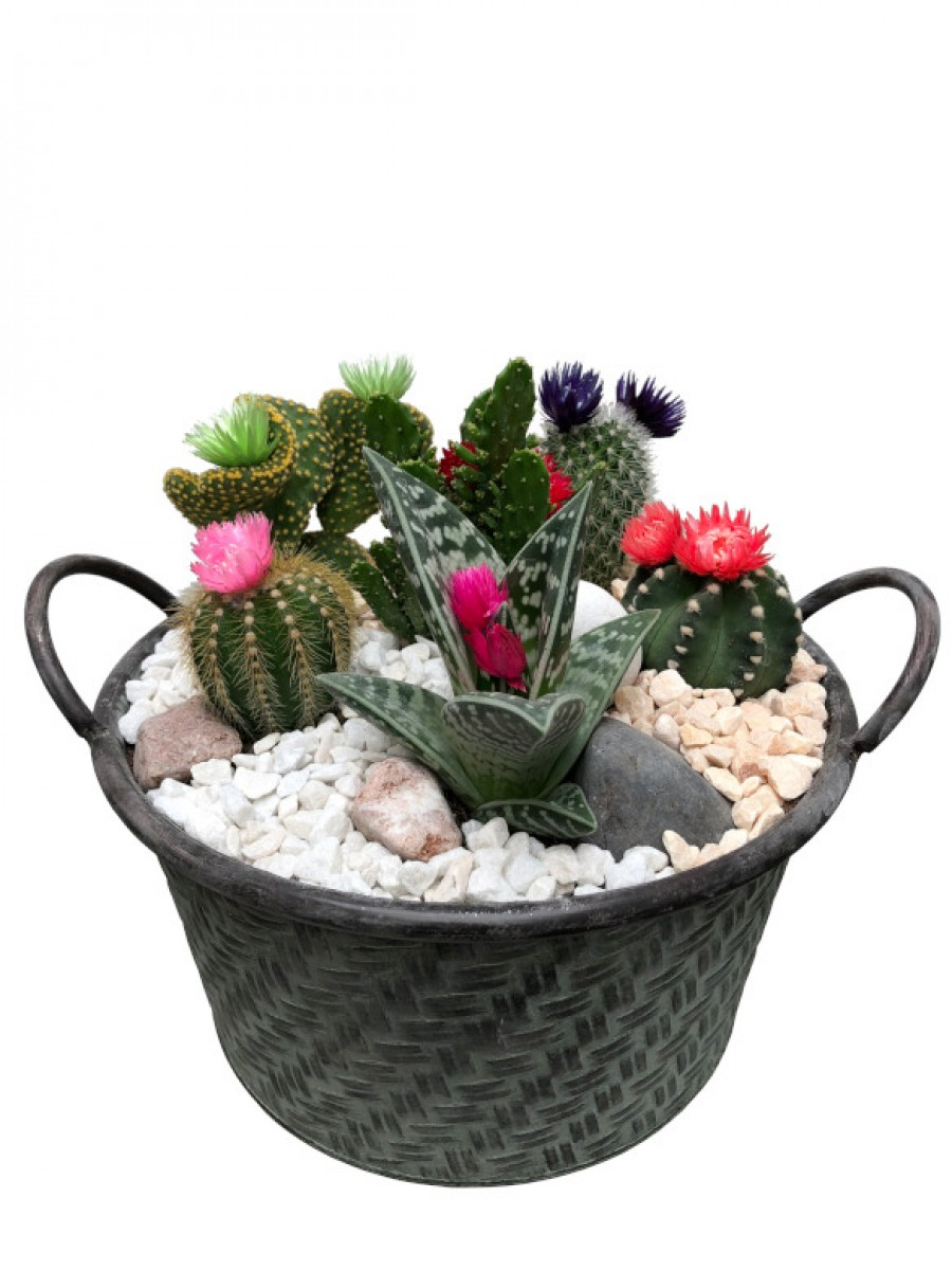 Centro de cactus flor en latón