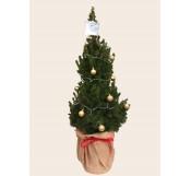 Árbol de navidad decorado 100m