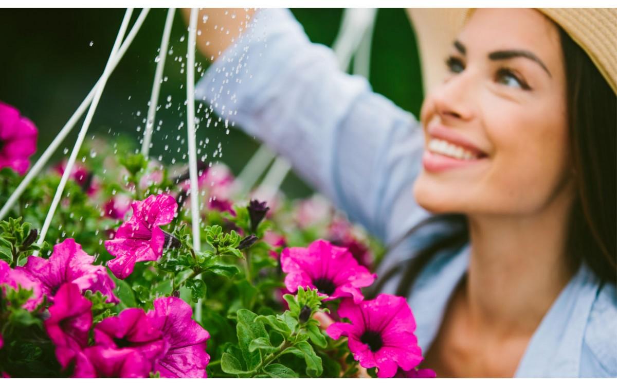 10 plantas con flores para regalar por cumpleaños