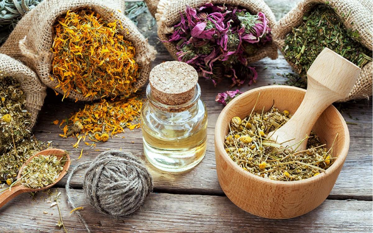 5 Plantas medicinales que te ayudarán a perder peso.