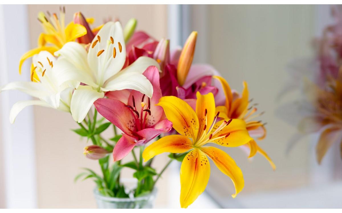 Cómo hacer un arreglo floral con lirios en tan solo seis pasos