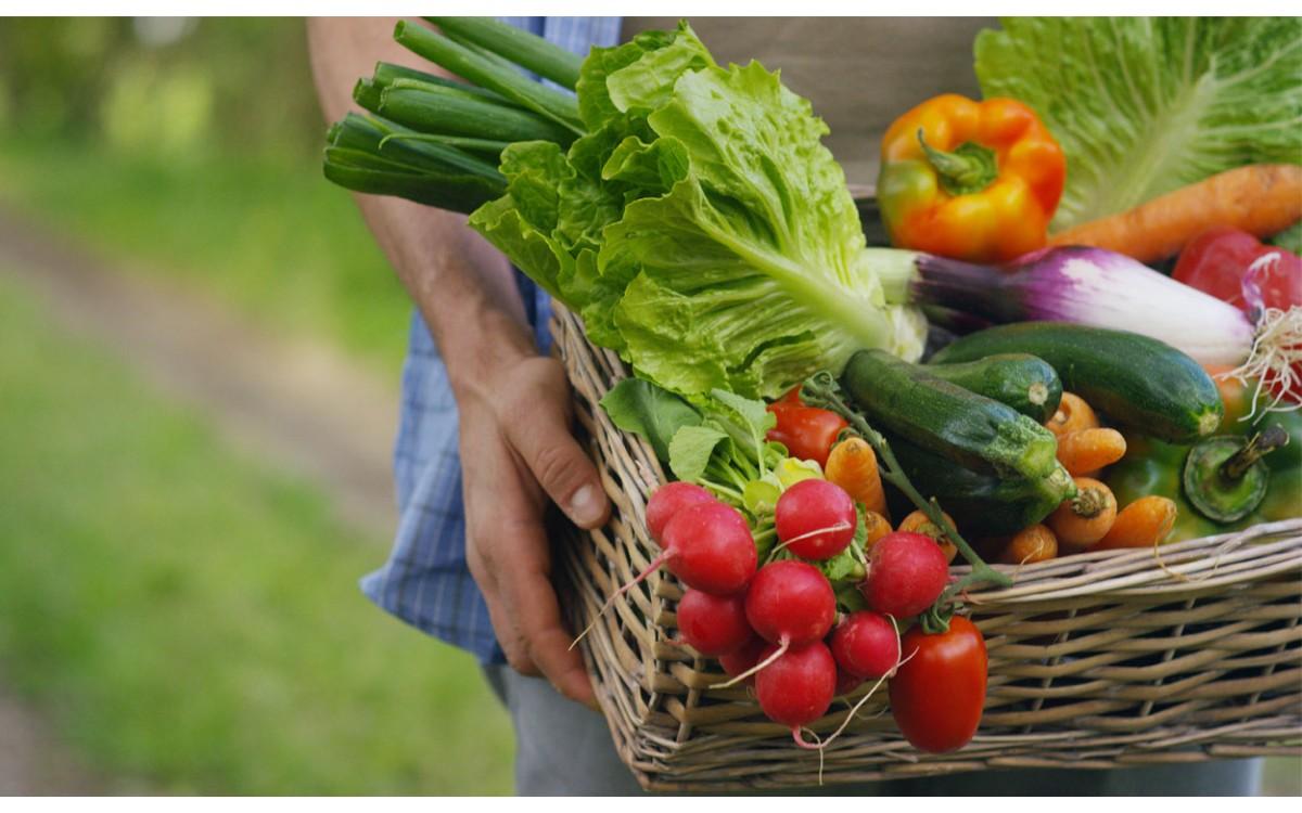 Las frutas, lo más delicioso y aromático de la naturaleza vegetal