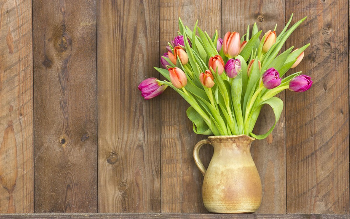 Regalar un Jarrón de Tulipanes