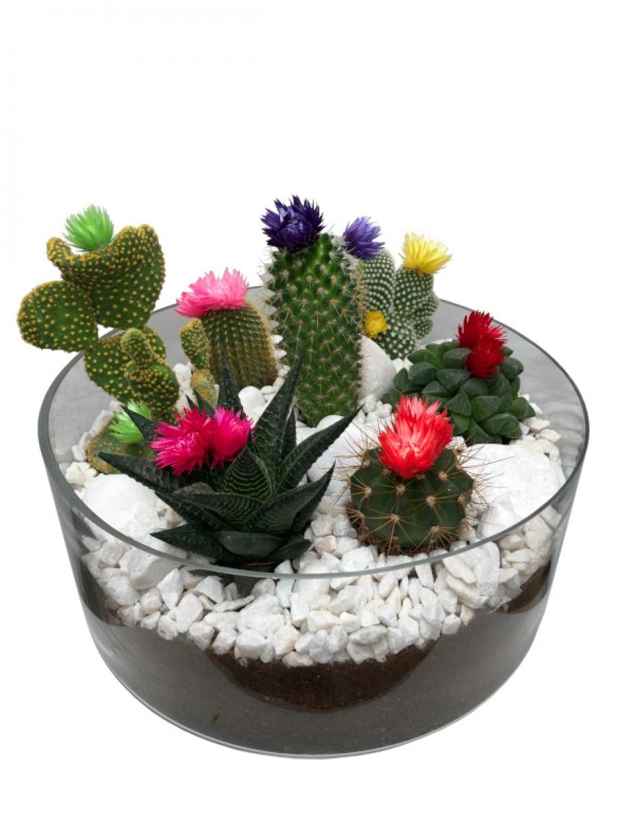 Centro de cactus flor  en cristal