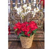 Cesta de   flores de pascua plata XXL(DISPONIBLE SOLO PARA MADRID)