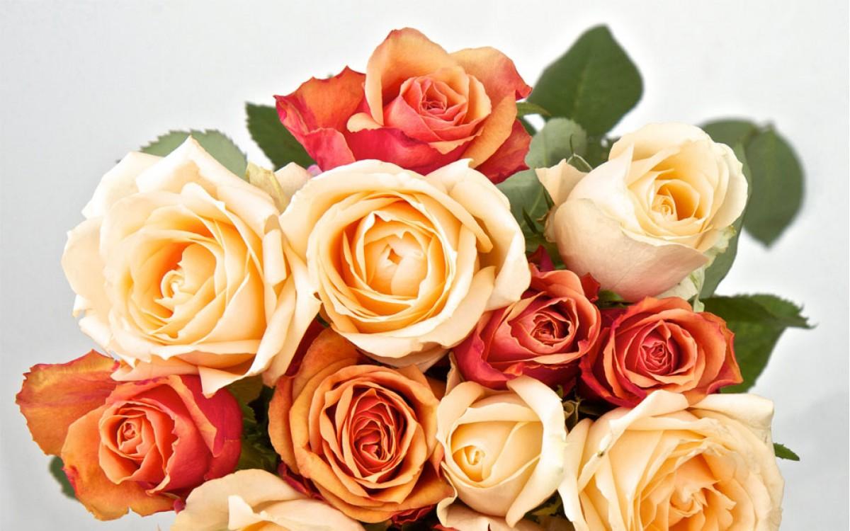 ¿Qué regalar para alguien que ha tenido un éxito? Unas Rosas Naranjas