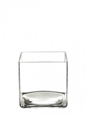 Macetero de cristal 12*12*12