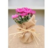 01 Crisantemo Rosa M12 Arpillera