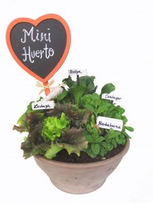 Mini huerto de cuatro plantas
