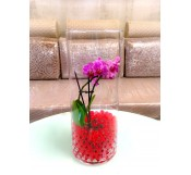 Mini orquidea morada con gel