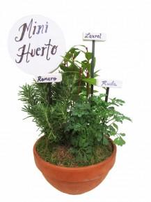 Mini huerto de tres plantas