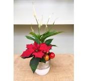 1 Flor de pascua en cesta