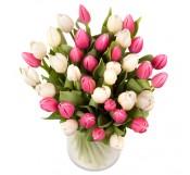 1 Jarron de 40 tulipanes rosas y blancas
