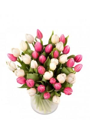 40 tulipanes blancos y rosas (incluido jarrón de regalo)