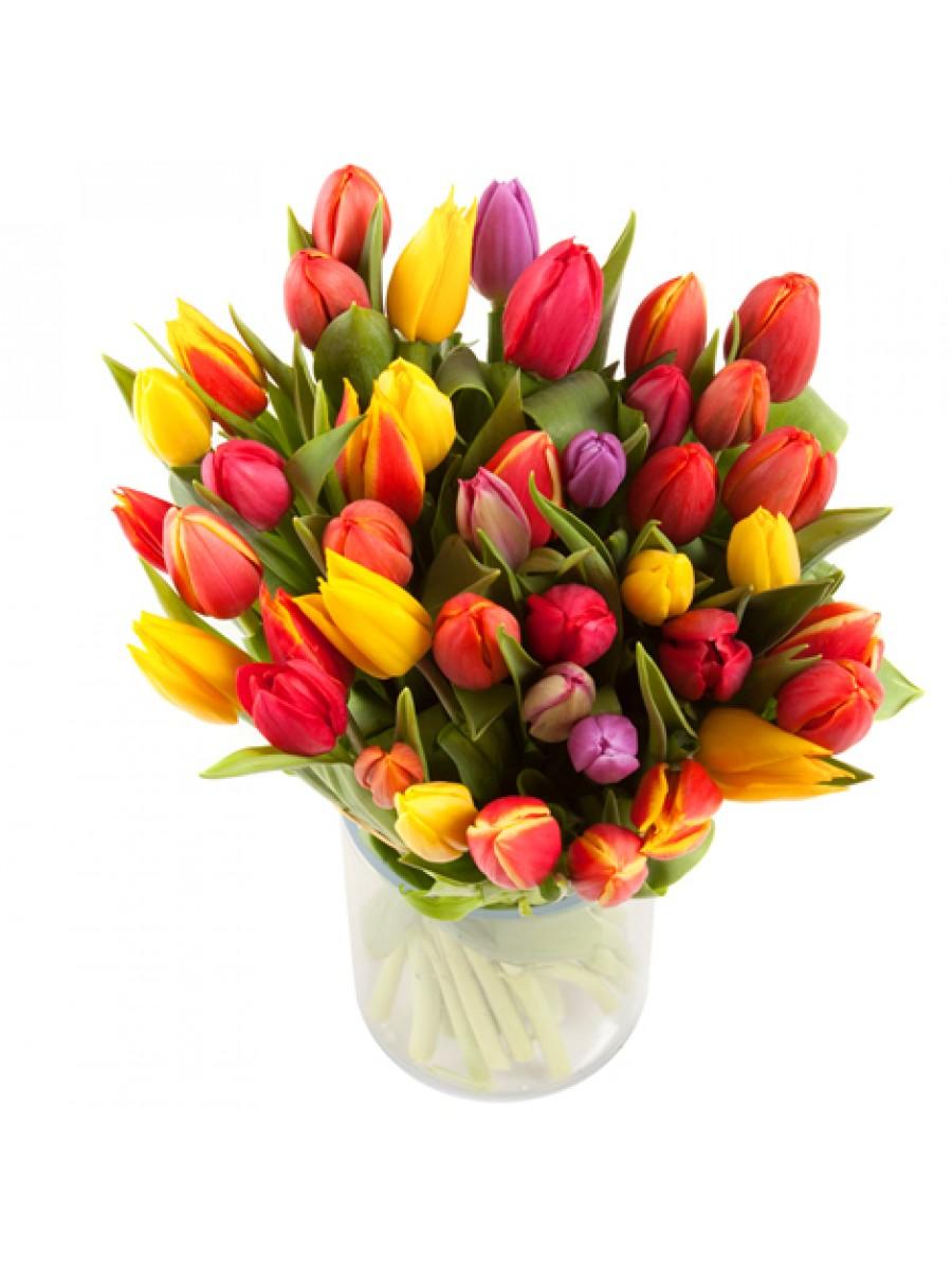 Jarrón de 40 tulipanes variados