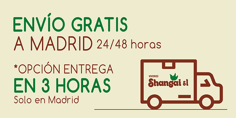 Transporte Gratis Madrid